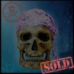 SKULLYS # 1550 - SOLD