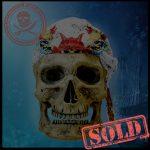 SKULLYS # 1604 - SOLD