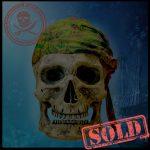 SKULLYS # 1793- SOLD