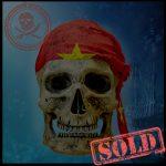SKULLYS #216 - SOLD