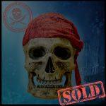SKULLYS # 2254 - SOLD