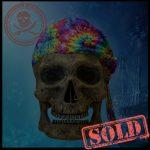 SKULLYS #389 - SOLD