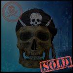 SKULLYS #435 - SOLD