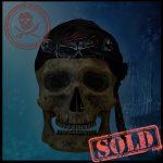 SKULLYS #445 - SOLD