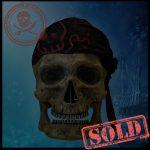 SKULLYS # 446 - SOLD